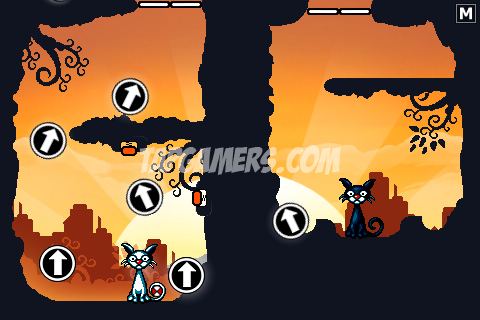 Cat Physics Solutions Guide | Tap Gamers